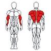 Блок для мышц спины TC-202 (нижняя тяга) BruStyle - фото 2