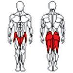 Фото 2 к товару Тренажер для ягодичных мышц Vadzaari