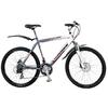 Велосипед горный Winner Viking Disk 21 - фото 1