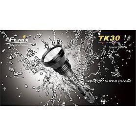 Фото 7 к товару Фонарь тактический Fenix TK30 Cree MC-E LED