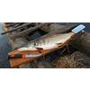 Набор для разделки рыбы Экспедиция - фото 2