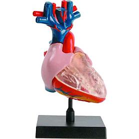 Фото 2 к товару Набор Heart Сердце