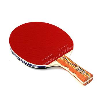 Ракетка для настольного тенниса Atemi 2000C 5*
