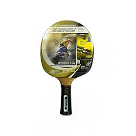 Фото 1 к товару Ракетка для настольного тенниса Donic Top Teams 1000 (+DVD) 5*