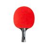 Ракетка для настольного тенниса Cornilleau Perform - фото 1