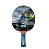 Ракетка для настольного тенниса Donic Waldner 800 (+DVD) - фото 1
