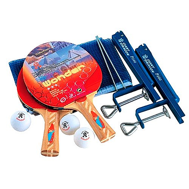 Набор для настольного тенниса Giant Dragon TEC08311