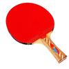 Ракетка для настольного тенниса Giant Dragon Techno Power 08311A - фото 1