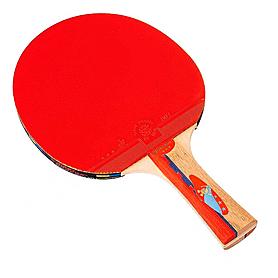 Фото 1 к товару Ракетка для настольного тенниса Giant Dragon Techno Power 08315A