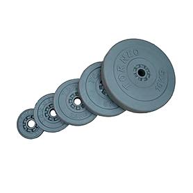 Диск композитный 0,5 кг Torneo - 31 мм