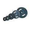 Диск стальной 20 кг Torneo с хватами – 31 мм - фото 1