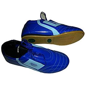 Фото 1 к товару Обувь для тхэквондо (степки) синяя Green Hill