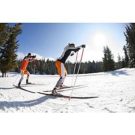 Фото 2 к товару Лыжи беговые универсальные Rossignol Delta Skating NIS (186 см, 192 см)