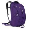 Рюкзак городской Osprey Axis 18 фиолетовый - фото 1