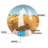 Термоноски Thermoform Unisex HTZS 21 - фото 4