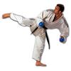 Кимоно для карате Adidas Combat с полосами - фото 1
