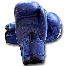 Фото 2 к товару Перчатки боксерские World Sport Club Star синие