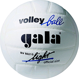 Мяч волейбольный Gala LightWhite BV5021SBE