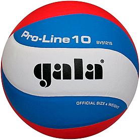Фото 1 к товару Мяч волейбольный Gala Pro-line BV5121SA