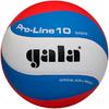 Мяч волейбольный Gala Pro-line BV5121SA - фото 1