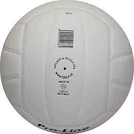 Фото 2 к товару Мяч волейбольный Gala Pro-Line BV5211SAE