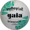 Мяч волейбольный Gala School BV5031LBE - фото 1