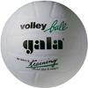 Мяч волейбольный Gala Training BV5041SB*E - фото 1