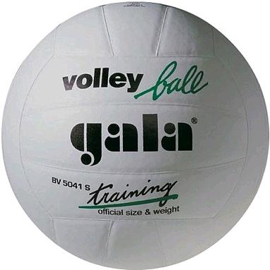 Мяч волейбольный Gala Training BV5041SB*E