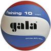 Мяч волейбольный Gala Training BV5561SB - фото 1