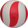 Мяч волейбольный Gala Bora 10 BV5671SC - фото 2