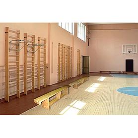 Фото 3 к товару Скамейка гимнастическая Ирель 2,5 м