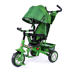 Фото 1 к товару Велосипед детский трехколесный Baby Tilly Blue Zoo-Trike BT-CT-0005 Green