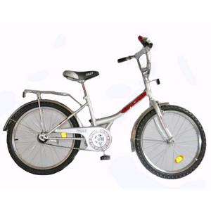 Велосипед детский Baby Tilly Explorer 20