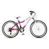 Велосипед подростковый горный Intenzo Jasmine 24
