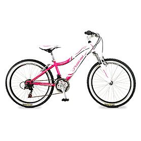 Фото 1 к товару Велосипед подростковый горный Intenzo Princess 24