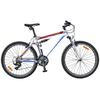 Велосипед горный Fort Charisma AM2 26