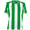 Футболка футбольная Joma Pisa зелено-белая - фото 1