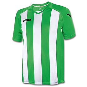 Фото 1 к товару Футболка футбольная Joma Pisa 12 бело-зеленая