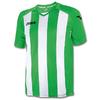 Футболка футбольная Joma Pisa 12 бело-зеленая - фото 1