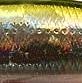 Воблер Jackson TroutTune (5,5 см, 3,5 г) - SO