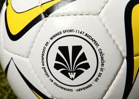 Фото 2 к товару Мяч футбольный Winner Platinium FIFA Inspected