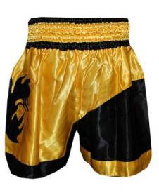 Фото 2 к товару Трусы для тайского бокса TWINS ZB-6138-Y желтые