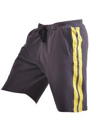 Шорты Berserk Speed Training темно-серые