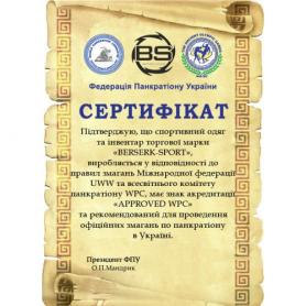 Фото 4 к товару Шорты для MMA Berserk Pankration Approwed WPC black