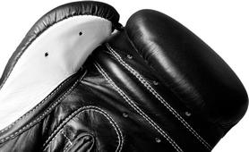 Фото 2 к товару Перчатки боксерские Hammer Premium Fitness