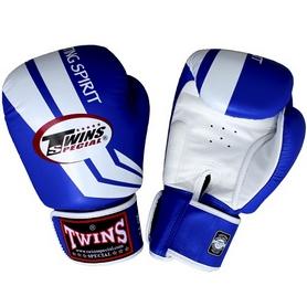 Перчатки боксерские Twins FBGV-43W-BU синие