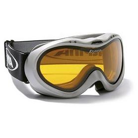Фото 1 к товару  Маска горнолыжная Alpina Free silver