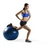 Мяч для фитнеса (фитбол) ProForm PFISB6513 65 см синий - фото 4