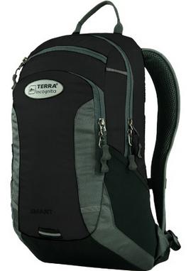 Рюкзак спортивный Terra Incognita Smart 20 черный/серый