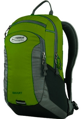 Рюкзак спортивный Terra Incognita Smart 20 зеленый/серый
